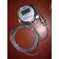 DTM-491数显温度计 不锈钢温度计带线