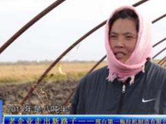 河北电视台财经报道 邢台第一拖拉机制造有限公司