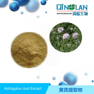 黄芪提取物 黄芪甲苷0.3% 黄芪浓缩粉