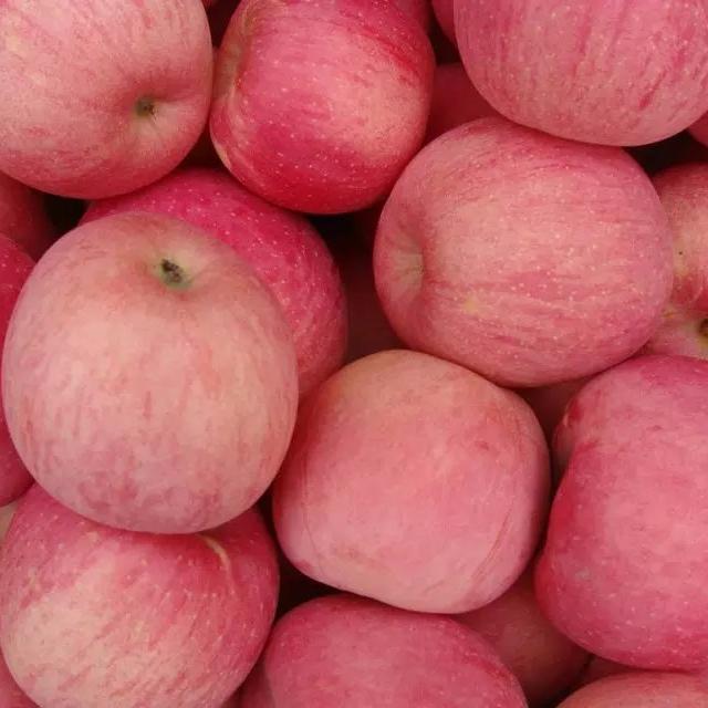 求购红富士苹果