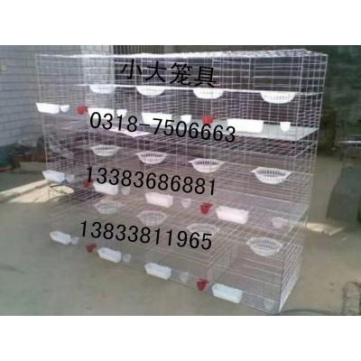 卖鸡笼鹧鸪笼鹌鹑笼鸽子笼兔子笼运输笼狐狸笼鸟笼狗笼猫笼