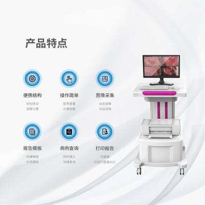 阴道镜检查结果 数码电子阴道镜